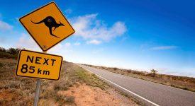 Korotkoe soderjanie top_3 luchshih romana avstraliiskih pisatelei