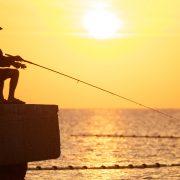 Korotkoe soderjanie podborki knig o ribalke