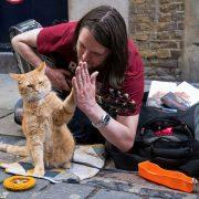 Джеймс Боуэн «Мир глазами кота Боба» слушать аудиокнигу