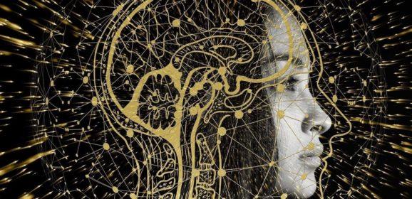 Роджер Пенроуз «Тени разума. В поисках науки о сознании» читать онлайн