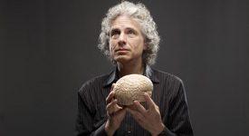 Стивен Пинкер «Язык как инстинкт» читать онлайн