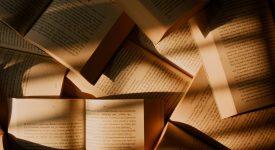 Витольд Гомбрович читать книги онлайн