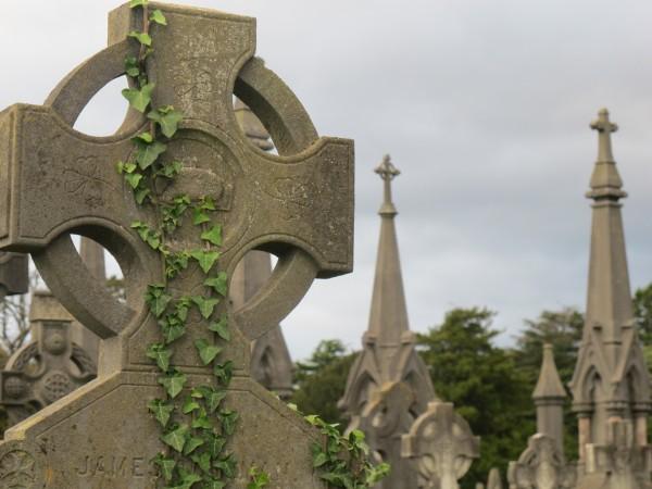 Джозеф Ле Фаню «Дом у кладбища» читать онлайн