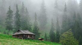 Ольга Токарчук «Дом дневной, дом ночной» читать онлайн