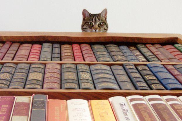 Самые необычные книги