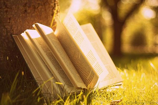 книга читать онлайн