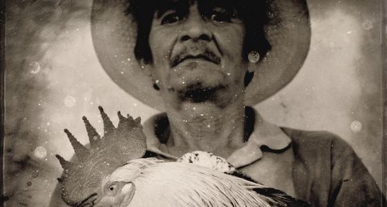 Читать онлайн Хуана Рульфо «Педро Парамо»