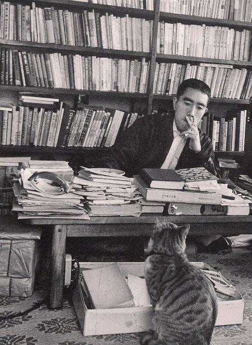 японская литература,