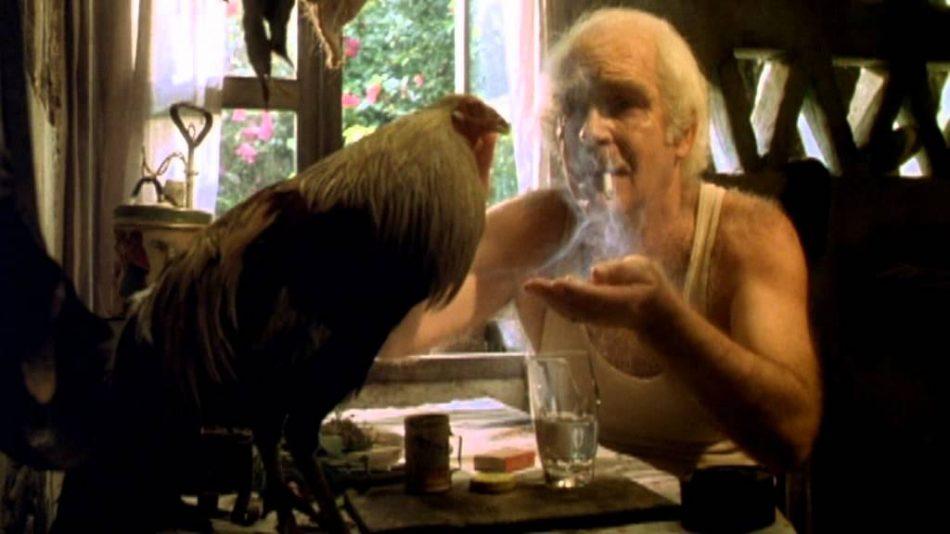Краткое содержание повести Г. Г. Маркес «Полковнику никто не пишет»
