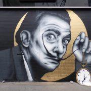 Kratkoe soderjanie Salvador Dali «Dnevnik odnogo geniya»