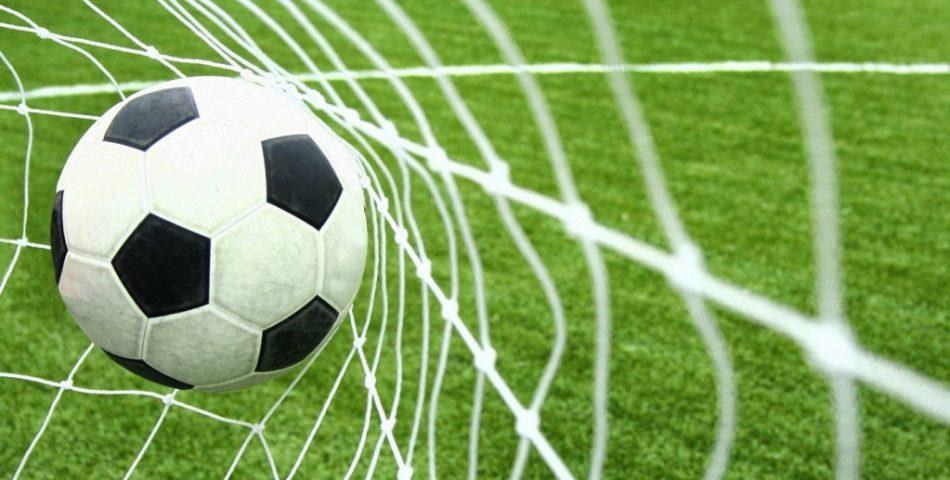 Korotkoe soderjanie podborki knig o futbole
