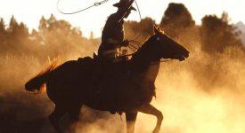 Кен Кизи «Последний заезд» о чем книга?