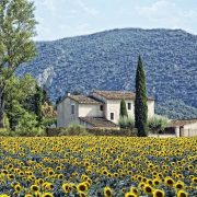 Питер Мейл «Год в Провансе» слушать онлайн
