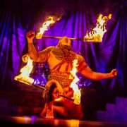 Джон Ирвинг «Сын цирка» слушать аудиокнигу