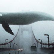 Мишель Фейбер «Дождь прольется вокруг» читать онлайн