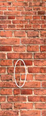 Приватные прокси для для сбора и фильтрации Качественные Прокси Под Для Сбора И Фильтрации ищу купить анонимные прокси socks5 для ps- рабочие прокси socks5 сша для serp parser