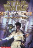 Читать книгу Jedi Apprentice 10: The Shattered Peace