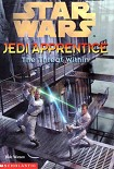 Читать книгу Jedi Apprentice 18: The Threat Within